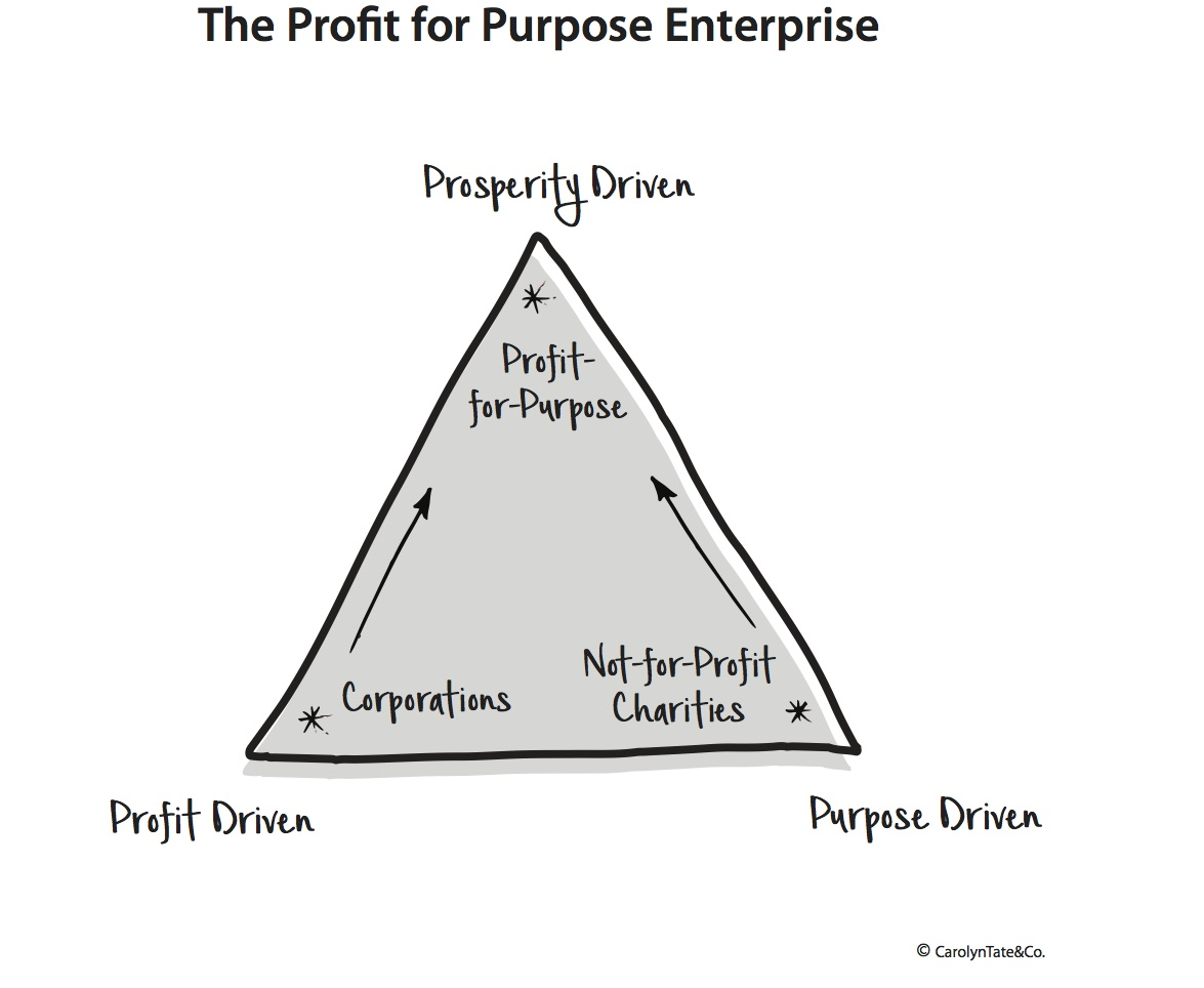 The-Profit-for-Purpose-Organisation