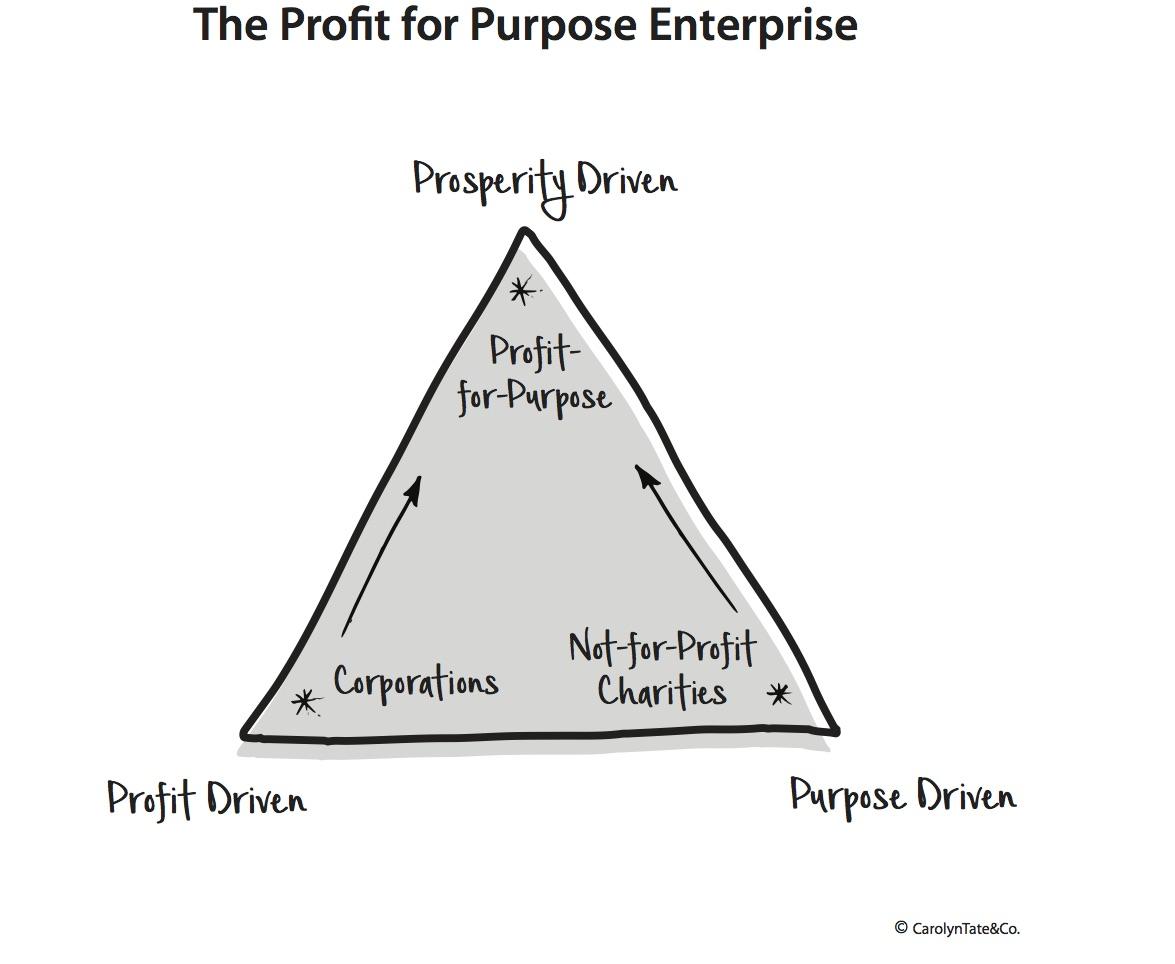The-Profit-for-Purpose-Organisation